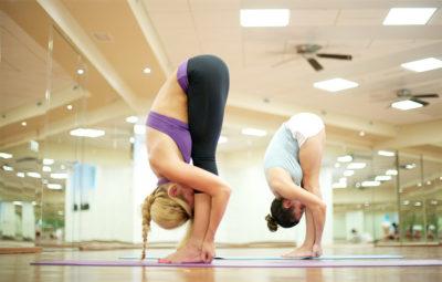hata-yoga_sphaera_palestra