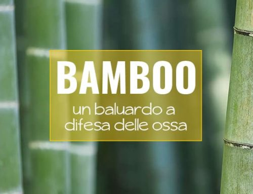 Bamboo ricchezza minerale
